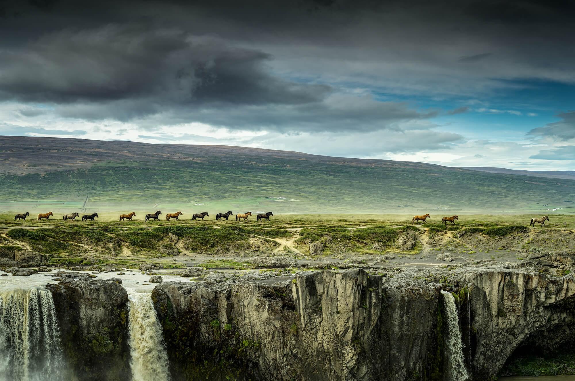 Paarden bij Godafoss